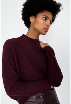 Berry Soft Funnel Neck Jumper